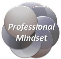 insight law professional mindset