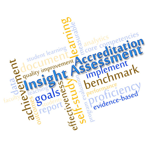 Word Cloud for Insight Accreditation