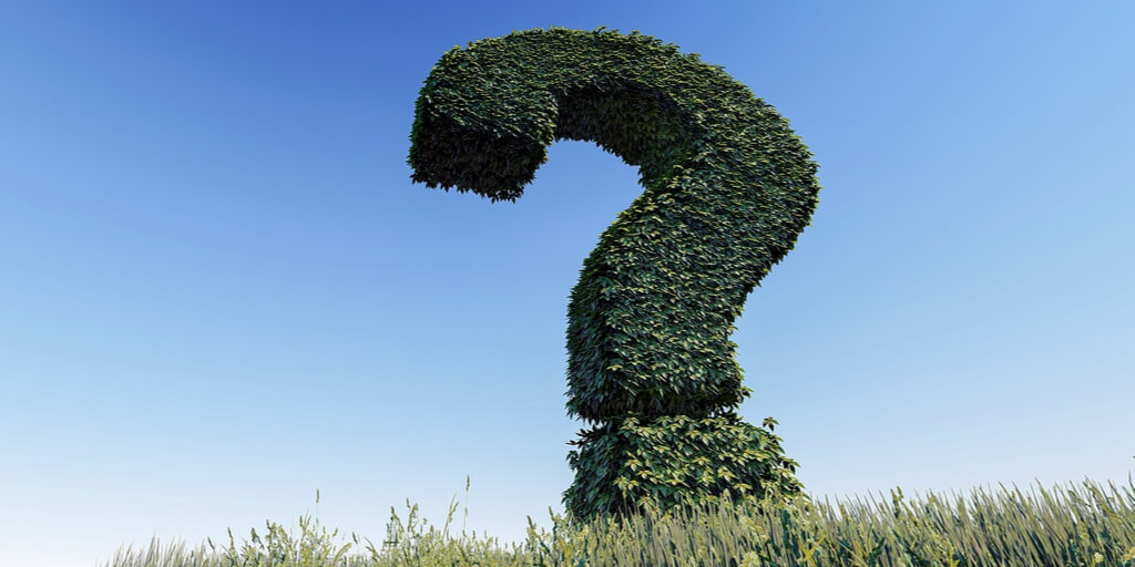 FAQs Hedge shaped like a green question mark