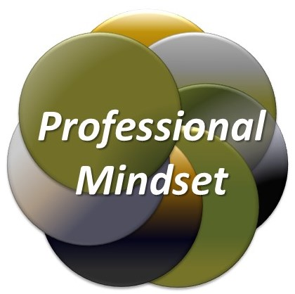 INSIGHT Defense Professional Mindset