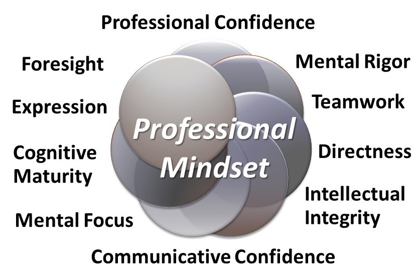 Legal mindset attributes measured by INSIGHT Law Professional