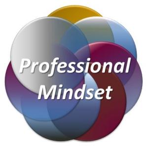 INSIGHT Science & Engineering Professional Mindset